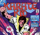 Karate Kid Vol 1 15
