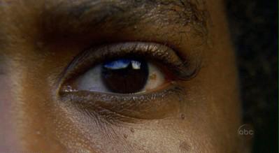 Black Eyes   Light Brown Eyes   Dark Brown Eyes Close Up   Hazel EyesVery Dark Brown Eyes Almost Black