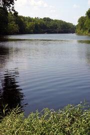 Spring River 2006-07-03 2104