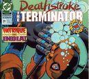Deathstroke the Terminator Vol 1 31