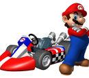 Karts in Mario Kart Wii