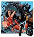 Elektra vs batgirl.jpg