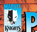 Black Panther Vol 3 12/Images
