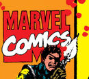 Nick Fury, Agent of S.H.I.E.L.D. Vol 3 21