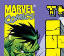 Incredible Hulk Vol 2 15