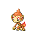 Chimchar Pt