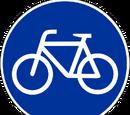 Radfahrstreifen (Deutschland)