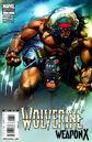 Wolverine Weapon X Vol 1 1b.jpg