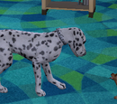 Pets (The Sims 3)