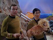Kirk & Sulu