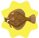 Flounder.png