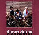 Duran Duran - 2001 Bootleg CDs
