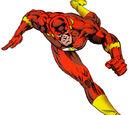 Referencias a Flash