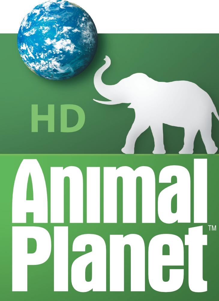 Animal Planet HD (United States) - Logopedia, the logo and branding