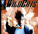 Wildcats: World's End Vol 1 14