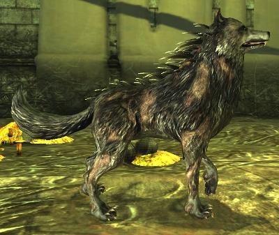 Blight Dragon Age Wiki