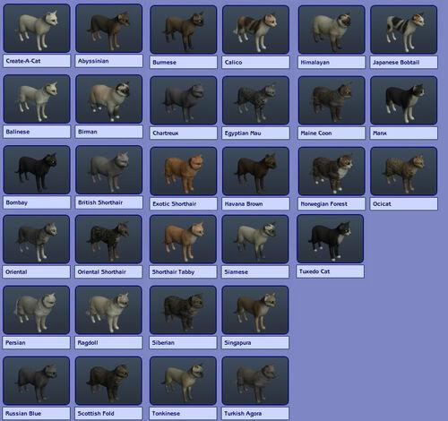 Sims  Pets Xbox  Dog Skills