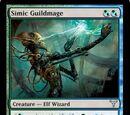 Simic Guildmage