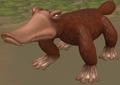 Anatinus