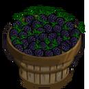 Blackberry Bushel-icon.png