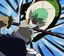 Roronoa Zoro gegen Ryūma