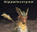 Hippalectryon