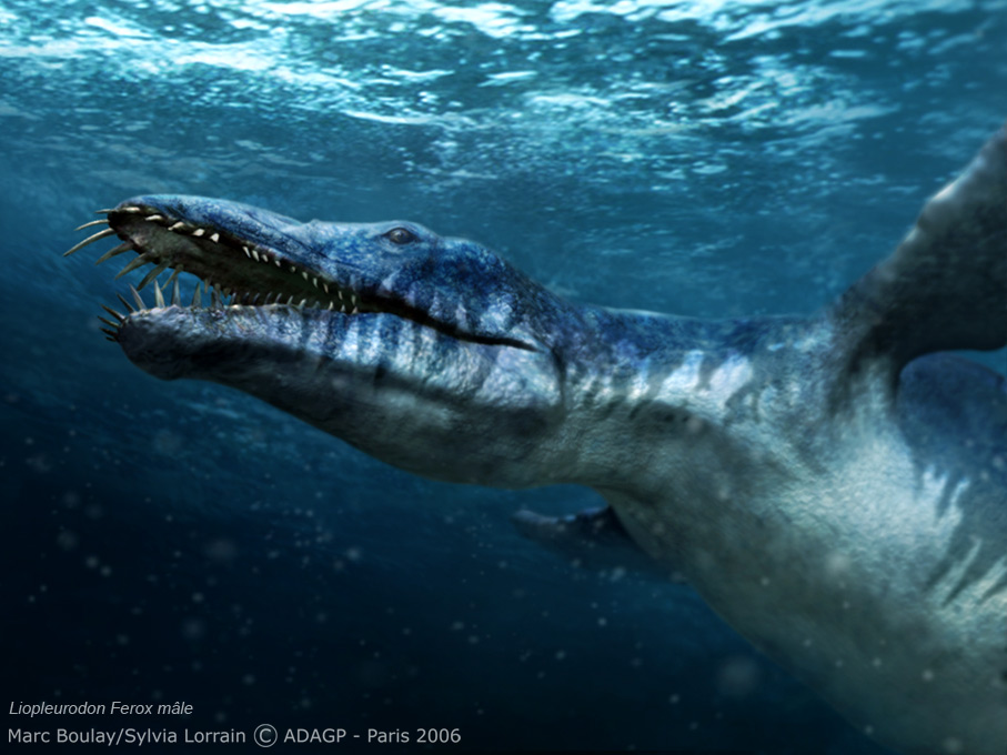 [Image: Liopleurodon_t99.jpg]
