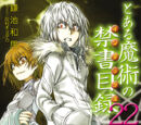Toaru Majutsu no Index Light Novel Volume 22