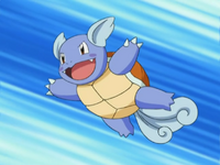 200px-May_Wartortle.png