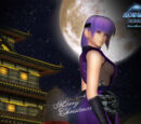Dead or Alive Online Wallpaper