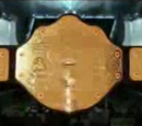 NGW World Heavyweight Championship