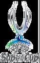 UEFA Super Cup.png