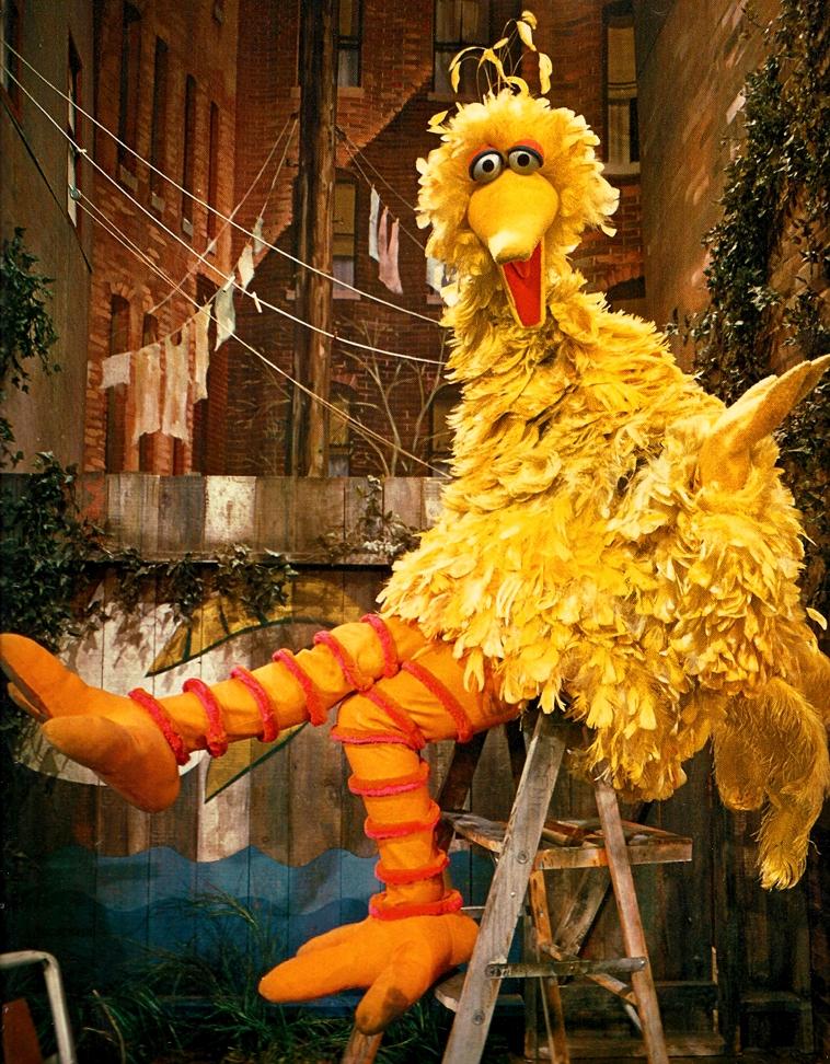 Big Bird Through The Years Muppet Wiki