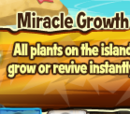 Miracle Growth