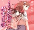 Toaru Majutsu no Index Light Novel Volume 08