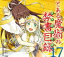 Toaru Majutsu no Index Light Novel Volume 17