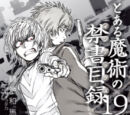 Toaru Majutsu no Index Light Novel Volume 19