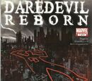 Daredevil: Reborn Vol 1
