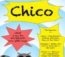 Chico the Raccoon
