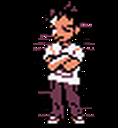 Brock (game)(GS)Sprite.png