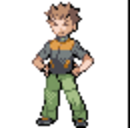 Brock (game)(FrLg)Sprite.png