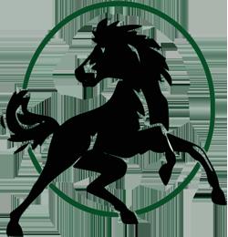 Cal Poly Pomona Broncos - Basketball Wiki