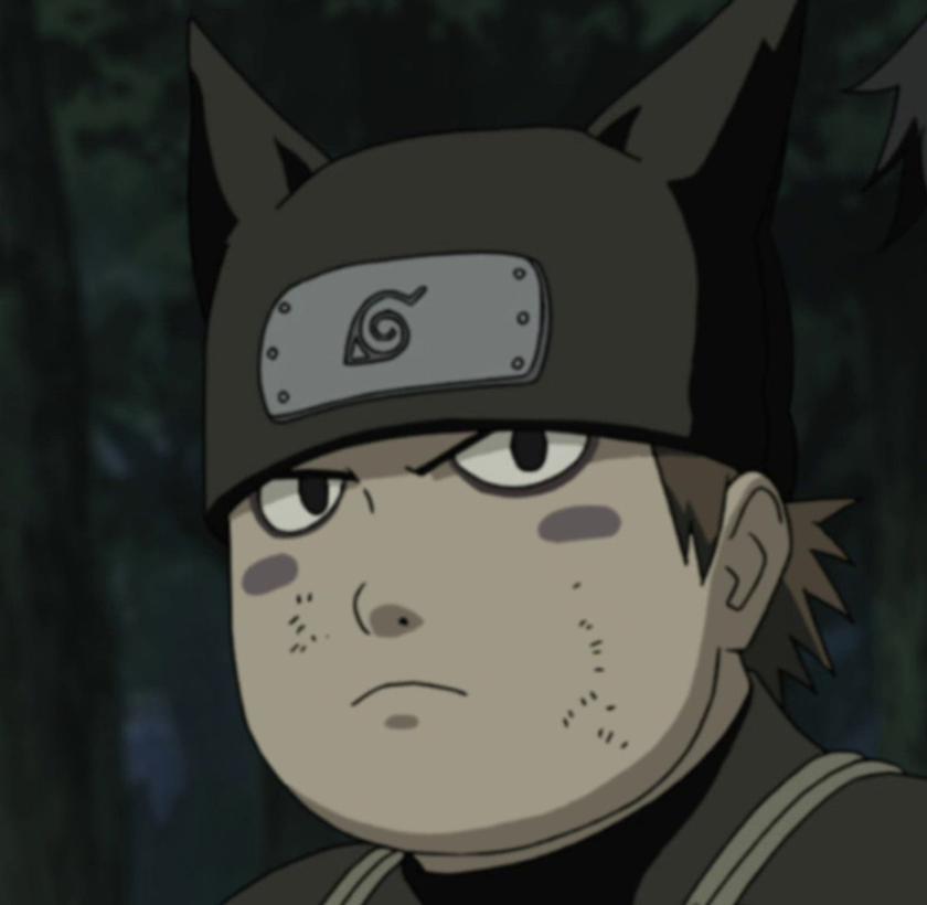 Narutopedia: Torifu Akimichi