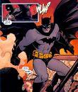 Batman 0511.jpg