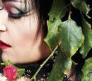 Siouxsiepedia