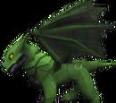 Baby green dragon