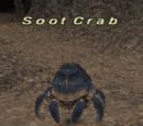 Soot Crab