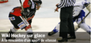 Spotlight-icehockey-255-fr.png
