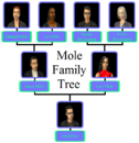Mole Family Tree.png