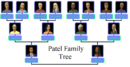 Patel Family Tree.png